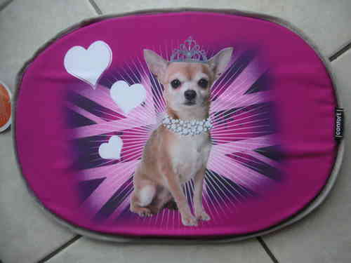 coussin galette 61cm chihuahua